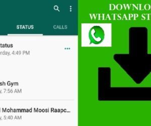 Download WhatsApp Status of Others